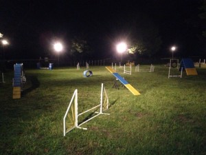 agilityfieldnight
